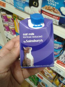 js milk cat